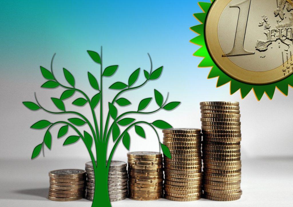 Investissement participatif